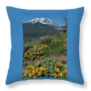 Colorado Spring Wildflower And Mountain Portrait Throw Pillow by Cascade Colors