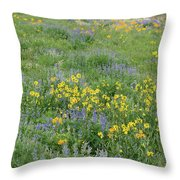 Colorado Summer Color Throw Pillow