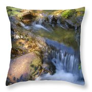 Colorado Tranquility Throw Pillow