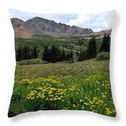 Colorado Wildflower Spectrum Throw Pillow