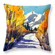 Colorado Winter 1 Throw Pillow