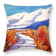 Colorado Winter 2 Throw Pillow