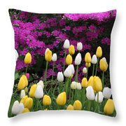 Colorful Spring Throw Pillow