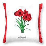 Colored Amaryllis. Botanical Throw Pillow