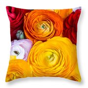 Colored Buttercup Flowers Throw Pillow