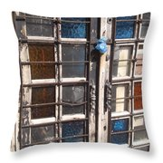 Colored Door Throw Pillow