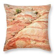 Colored Hill In Valley Of Fire Throw Pillow
