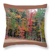 Colored Pencils 2 Throw Pillow