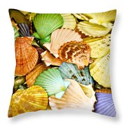 Colored Shells Throw Pillow