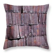 Colorful Armor Throw Pillow