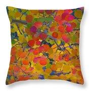 Colorful Aspen Throw Pillow