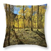 Colorful Aspens Throw Pillow