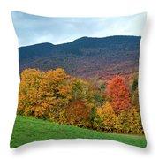 Autumnal Vermont Throw Pillow