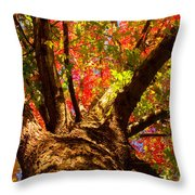 Colorful Autumn Abstract Throw Pillow by James BO  Insogna
