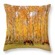 Colorful Autumn High Country Landscape Throw Pillow