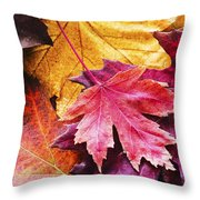 Colorful Autumn Leaves Closeup Throw Pillow