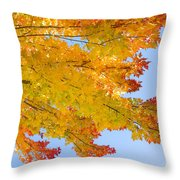 Colorful Autumn Reaching Out Throw Pillow