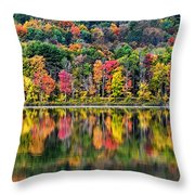 Colorful Autumn Reflections Throw Pillow