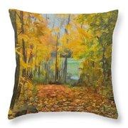 Colorful Autumn Trail Throw Pillow