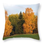 Colorful Autumn - Trees In Autumn Throw Pillow