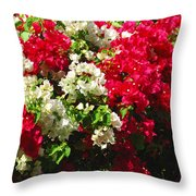 Colorful Bougainvilleas Throw Pillow