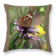 Colorful Butterfly On Daisy Throw Pillow
