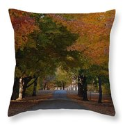 Colorful Byway Throw Pillow