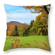 Colorful Cabot Throw Pillow
