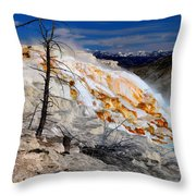 Colorful Canary Spring Throw Pillow