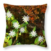 Colorful Chickweed Throw Pillow