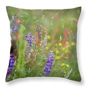 Colorful Colorado #2 Throw Pillow