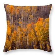 Colorful Colorado Autumn Landscape Vertical Image Throw Pillow