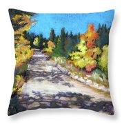 Colorful Colorado Throw Pillow