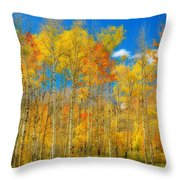 Colorful Colorado Fall Foliage Throw Pillow