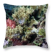 Colorful Coral Reef Throw Pillow