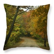 Colorful Country Throw Pillow