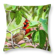 Colorful Couple Throw Pillow