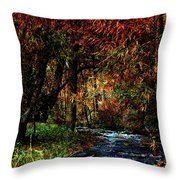 Colorful Creek Throw Pillow