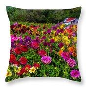 Colorful Dahlias In Garden Throw Pillow