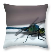 Colorful Dragon Throw Pillow