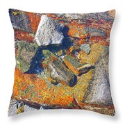 Colorful Earth History Throw Pillow