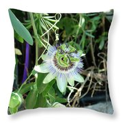 Colorfull Flower Throw Pillow