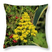 Colorful Flowers Blooming Throw Pillow