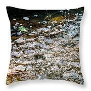 Colorful Fountain Throw Pillow