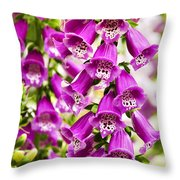 Colorful Foxglove Flowers Throw Pillow