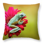 Colorful Frog Throw Pillow