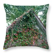 Colorful Gable Throw Pillow