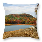 Colorful Georgia Throw Pillow