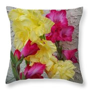 Colorful Glads Throw Pillow