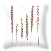 Colorful Grasses  Throw Pillow